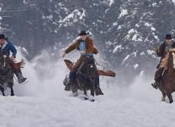 wild-west-horse-roundup-copyright-photographers-on-safari-com-7721