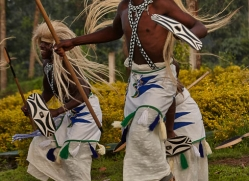 traditional-dancing-rwanda-3086-copyright-photographers-on-safari-com