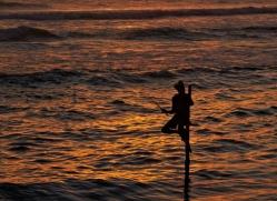 stilt-fisherman-sri-lanka-2920-copyright-photographers-on-safari-com